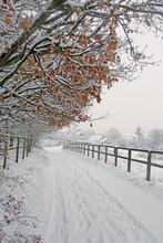 Mini_120223-031307-121_snow_snow_snow_019_copy