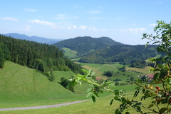 Hiking the hills and woods of southern Germany.