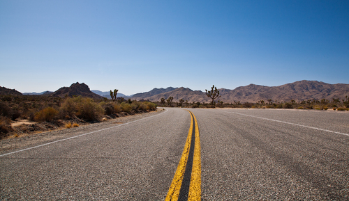 A road heads off into Joshua Tree National Park,