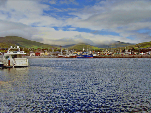 dingle harbour co.kerry
