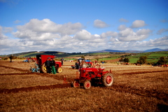 Ploughing championship's at Tullogher in Co. Kilkenny.