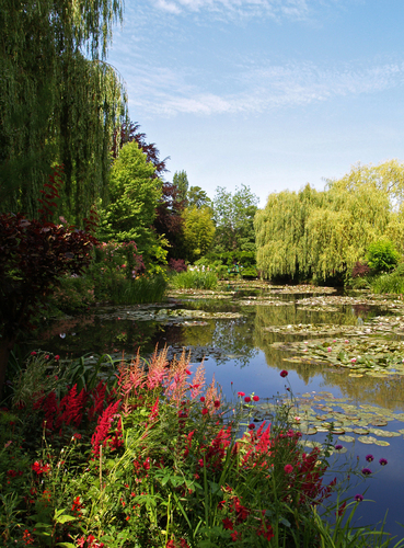 Summer view of Claude Monet's Water Garden at Giverny in Normandy.