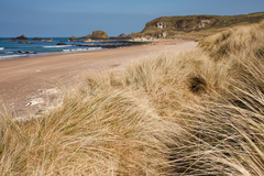 A spring morning at White Park Bay on the north coast of Ireland