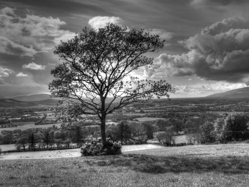 South Kilkenny landscape