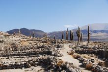 An ancient path at the Incan ruins of Santa Rosa de Tastil.