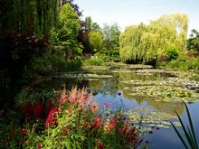 Mini_120522-055622-water_garden__summer_2