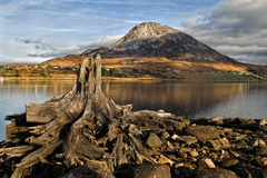 Mount Errigal is Donegal's tallest mountain and well worth a visit and is close to Glenveagh National Park!