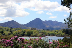 West Cork on a sunny May day this year... Walking through the Italian Gardens on Garnish Island, this was the view that greeted me of the Caha mountain range and Glengarriff Harbour, Bantry Bay.