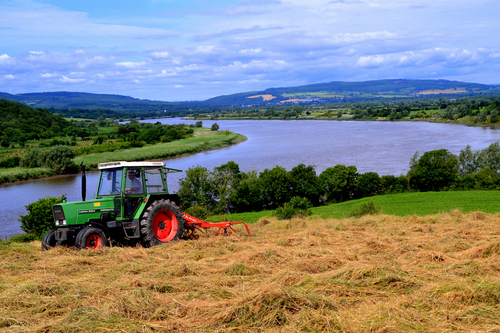 Tossing the hay at Ballygorey Mooncoin on the banks of the River Suir.