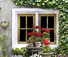 Mini_window