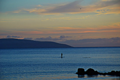 A stand up paddler in the evening ocean