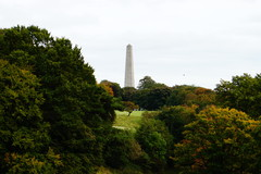 A Distance shot of the Wellington Testimonial in the Phoenix Park just a the beginning of Autumn.