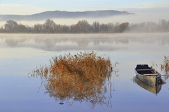 It was -2c this morning on the banks of the river Suir at Store Road, Mooncoin, Co. Kilkenny. This is a local spot for me, as I live a less than 1km from this location.