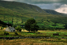 Mini_irish_cottage_copy