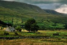 Mini_irish_cottage_copy