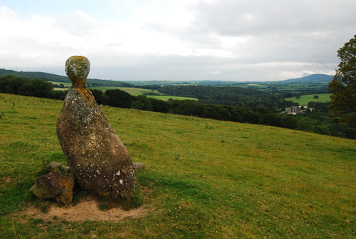"""A circle of stones, with a row of tall beech trees, shares the same field as Curraghmore's 'Stone Head' also known to some as """"Mother Brown"""" There are many stories about Mother Brown in the area. One can see eyes and a face carved on the head of this stone."""
