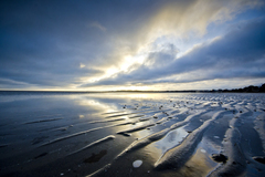 View at sunrise of ridges in the depleted tide on Sandymount strand