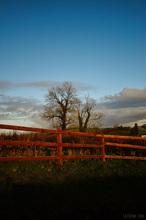 Mini_130002-163416-fence