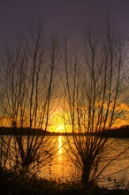 Mini_130004-044457-sunset