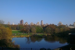 A beautiful autumnal New York skyline as viewed from Central Park.