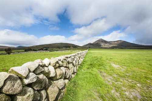 Dry Stone Wall leading to Slieve Binnian in the Mourne Mountains, Co Down, Northern Ireland