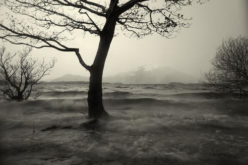 A stormy morning on Muckross Lake, Killarney National Park.
