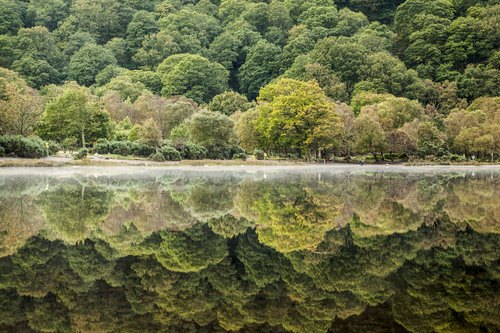 Upper Lake reflections, Glendalough, Wicklow Mountains National Park.
