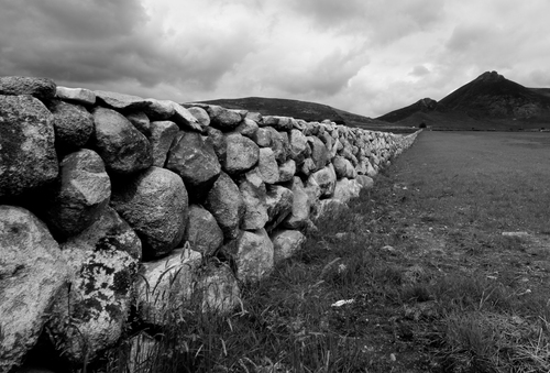 Taken in Kilkeel the farms have to cope with fields climbing up into the Mourne mountains.