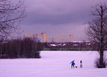Mini_130122-231358-h_w_cranes_in_the_snow