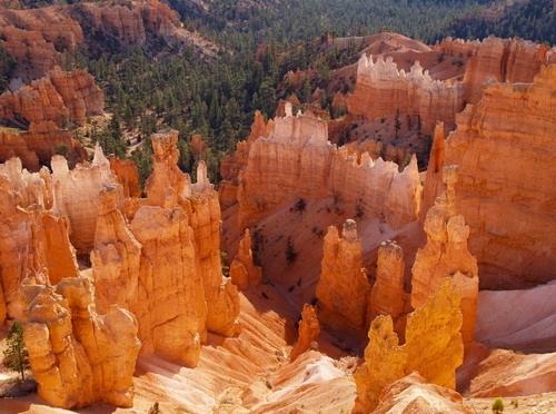 View looking down from Sunset Point at Thor's Hammer, one of the many eroded sandstone columns known as Hoodoos in Bryce Canyon National Park in south western Utah.