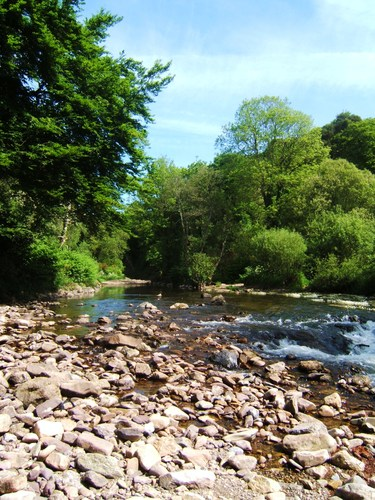 Another image of the Clodagh River taken at the reae of the Tannery in the village of Portlaw, Co. Waterford, Ireland.
