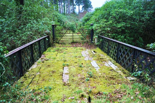 The Metal Bridge, Portlaw which links the Curraghmore Estate and Irish Forestry Lands.