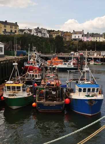 A number of Fishing Boats moored for the night at the pier at Dunmore East, Co. Waterford, Ireland.