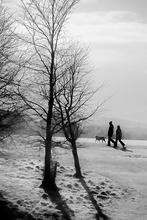 Mini_130219-222631-walk_in_the_park2