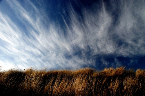 Spring Clouds against the marram grass on the sand dunes of Velvet Strand, Portmarnock