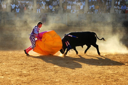 A bullfight in the historic town of Ronda, Spain.