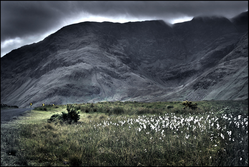 "Mweelrea, Co. Mayo. From the Irish, Cnoc Maol Réidh meaning ""smooth bald hill"", the darkening, scooped out slope facing my journey south belied its name. Bog cotton was once used for making candle wicks and also for stuffing pillows. It was even used in wound dressings during the First World War."
