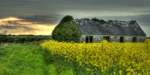 Old cottage in the sunset