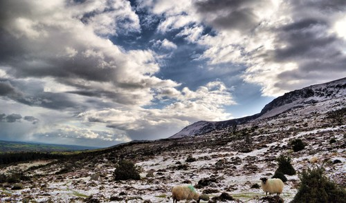 Comeragh Mountains, Co. Waterford.