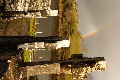 Celtic Cross tombstone at Burrishoole Abbey