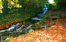 Mini_130316-204533-waterfall_graig_copy