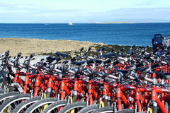 Bicycles for hire on The AranIslands, Ireland.