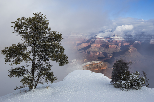 The South Rim of the Grand Canyon in January.
