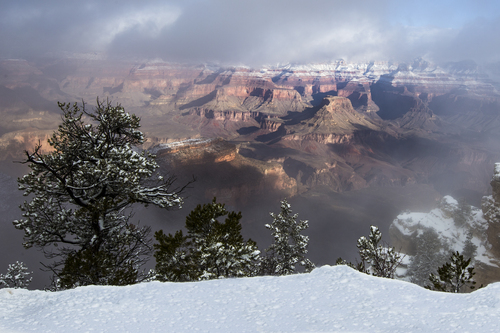 Grand Canyon in January.
