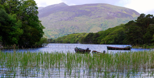 Boats on the lake at Muckross House, Killarney