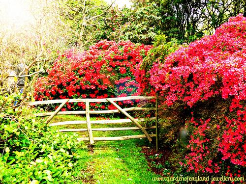 Sandlinge Park Kent United Kingdom