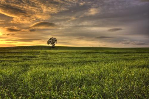 Carlow Sunrise
