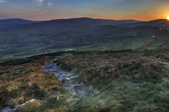 Looking west from the summit of Carrickgolligan on a late spring evening.