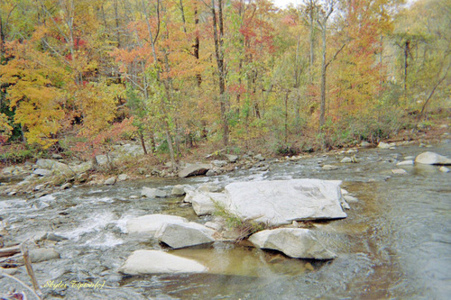 This creek is to be found nestled up within the mountains of Chimney Rock, North Carolina US
