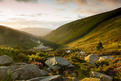 Sunrise in the Wicklow mountains
